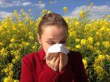 Alergia na pyłki sygnałem, by udać się do alergologa